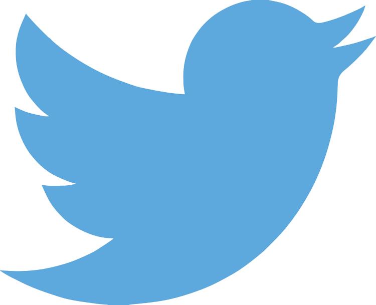 icono-twitter-ganar-dinero-twitter